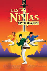 Film Ninja Kids 2 : Les 3 Ninjas contre-attaquent streaming VF complet