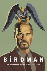 Birdman o (la inesperada virtud de la ignorancia) 2014