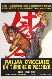 Invincible iron palm, The (1971)