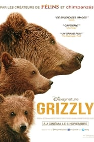 Grizzly streaming sur libertyvf