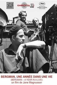 Bergman, une année dans une vie streaming sur zone telechargement