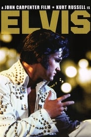 Le Roman d'Elvis streaming sur libertyvf