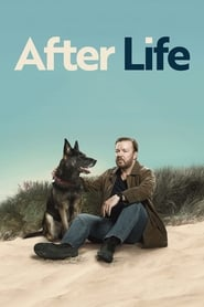Descargar After Life: Más allá de mi mujer Latino HD Serie Completa por MEGA