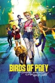 Descargar Harley Quinn: Aves de presa 2020 Latino DUAL HD 720P por MEGA