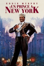 Film Un prince à New York streaming VF complet