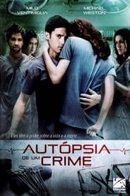 Ressaca de Amor (2008) Assistir Online