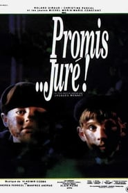 Promis... juré ! streaming sur filmcomplet