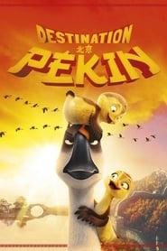 film Destination Pékin ! en streaming
