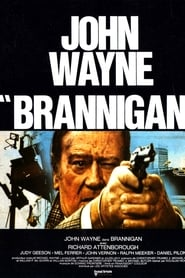 Film Brannigan streaming VF complet