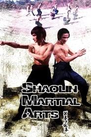 As Artes Marciais de Shaolin (1974) Assistir Online