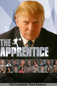 The Celebrity Apprentice Season 3