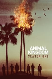 Animal Kingdom streaming sur zone telechargement