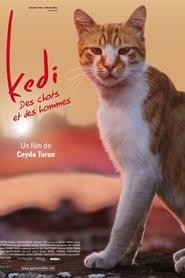 voir film Kedi - Des chats et des hommes streaming