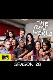 The Real World Season 28