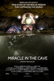 Poster for The Cave (2020)