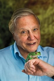 David Attenborough streaming movies