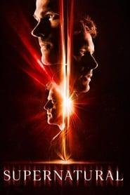Descargar Supernatural Temporada 13 Español Latino & Sub Español por MEGA