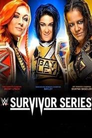 Poster for WWE Survivor Series (2019)