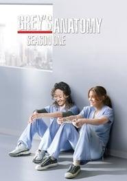 Grey's Anatomy – Season 1