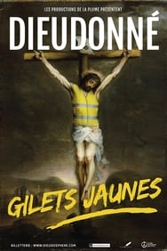 film Dieudonné Gilets Jaune streaming