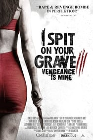 I Spit On Your Grave 3: Vengeance is Mine streaming