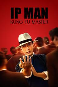 Ip Man Kung Fu Master: les Origines