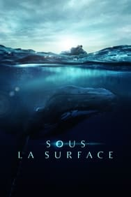 Film Sous la surface streaming
