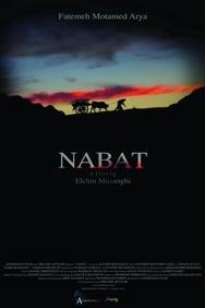 Nabat streaming