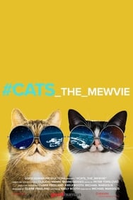 Film #Cats_the_mewvie streaming