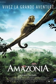 Amazonia streaming