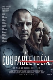 Film Le Coupable Idéal streaming