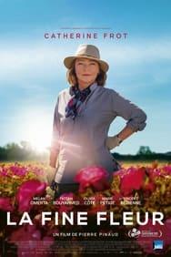 Film La Fine fleur streaming