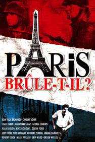 Paris brûle-t-il ? streaming