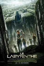 film Le Labyrinthe 1 streaming