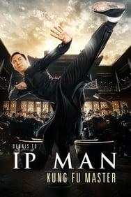 Ip Man: Kung Fu Master streaming