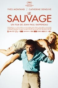 Film Le sauvage streaming