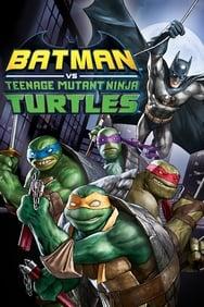 Batman vs. Teenage Mutant Ninja Turtles streaming