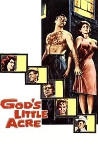 Le petit arpent du bon Dieu affiche du film