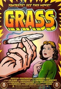 Grass affiche du film