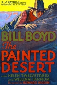 The Painted Desert affiche du film