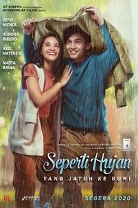 Love Like the Falling Rain (2020)