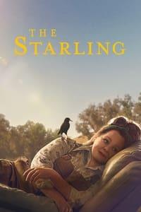 El estornino (The Starling) (2021)