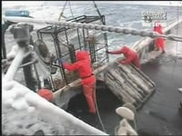 Deadliest Catch S02E09