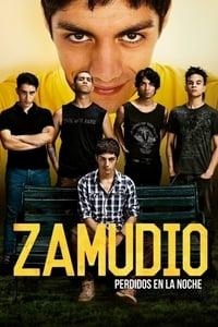 Zamudio (2015)