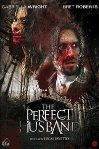 copertina film The+Perfect+Husband 2014