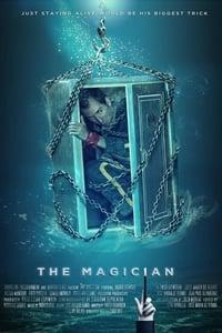 El mago (2014)