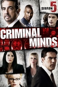 Criminal Minds S05E10