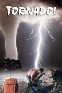 copertina film Tornado 1996