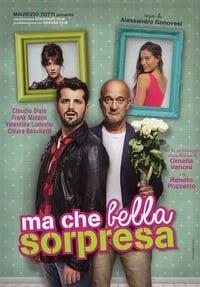 copertina film Ma+che+bella+sorpresa 2015