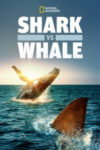 Shark vs. Whale (2020)